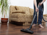 Central Vacuum or Portable Vacuum
